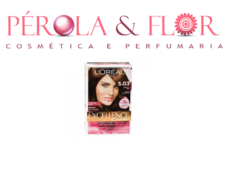Coloraçao Excellence LOREAL N.5.3
